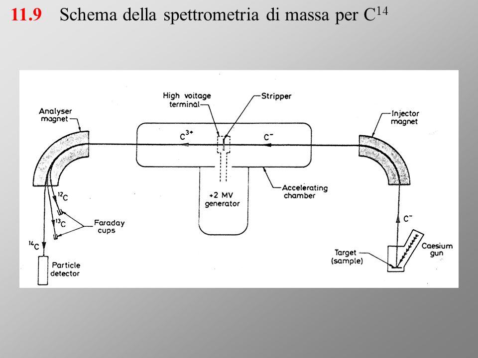 11.9Schema della spettrometria di massa per C 14
