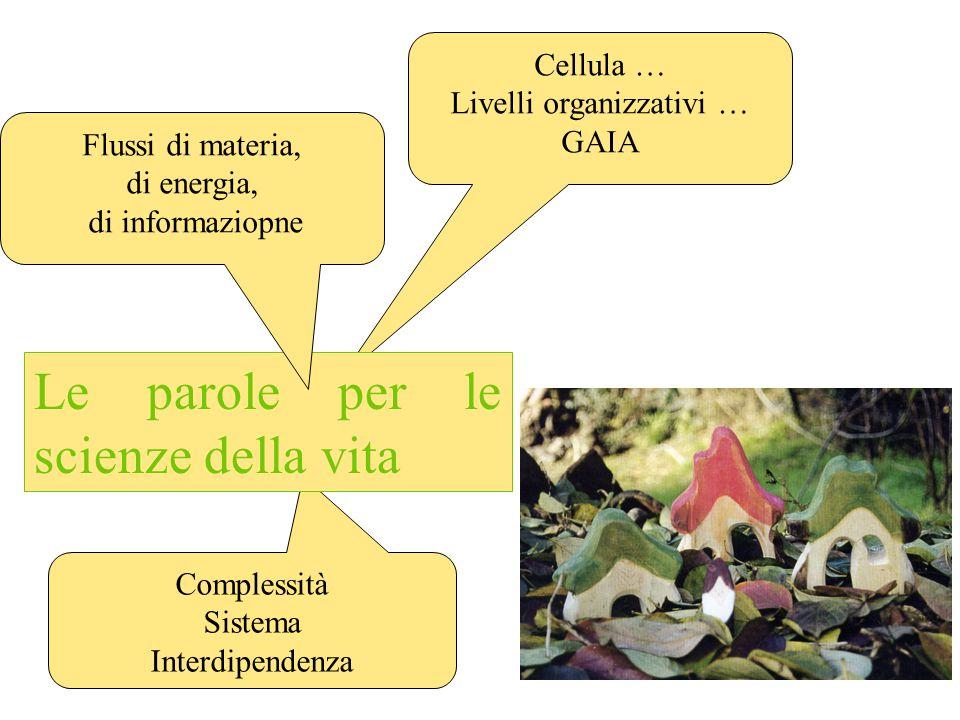 Interdipendenza struttura / funzione Autopoiesi Evoluzione Cellula … Livelli organizzativi … GAIA Complessità Sistema Interdipendenza Le parole per le scienze della vita Flussi di materia, di energia, di informaziopne
