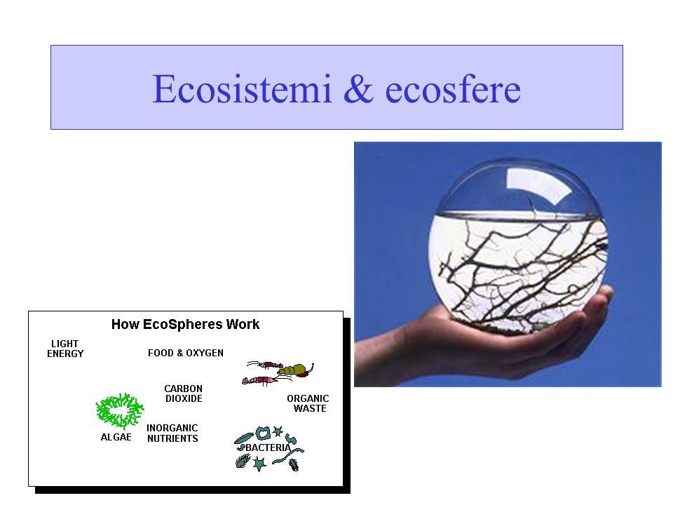 Ecosistemi & ecosfere
