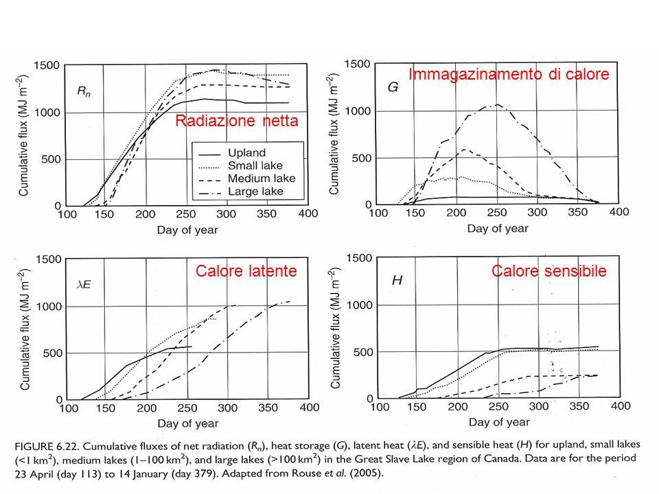 Radiazione netta Immagazinamento di calore Calore latenteCalore sensibile