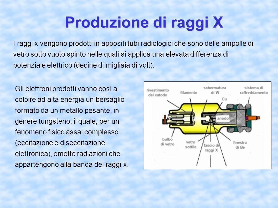 Produzione di raggi X I raggi x vengono prodotti in appositi tubi radiologici che sono delle ampolle di vetro sotto vuoto spinto nelle quali si applica una elevata differenza di potenziale elettrico (decine di migliaia di volt).