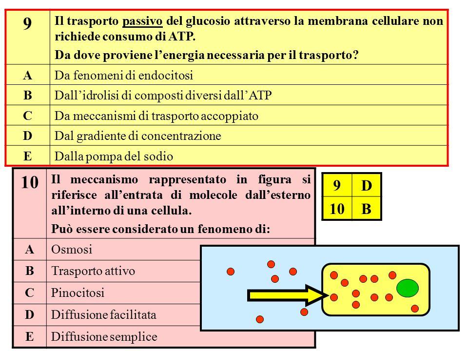 10 Il meccanismo rappresentato in figura si riferisce all'entrata di molecole dall'esterno all'interno di una cellula. Può essere considerato un fenom