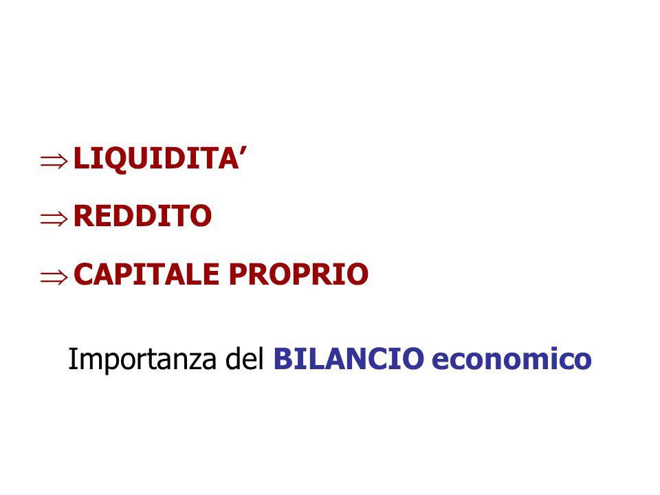  LIQUIDITA'  REDDITO  CAPITALE PROPRIO Importanza del BILANCIO economico