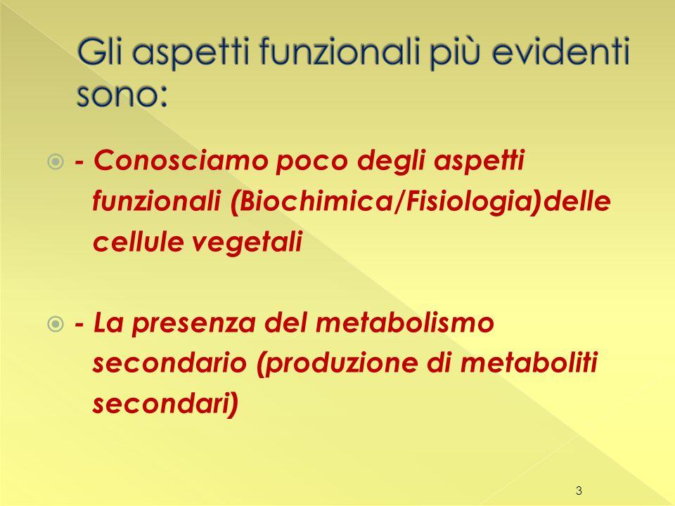  - Conosciamo poco degli aspetti funzionali (Biochimica/Fisiologia)delle cellule vegetali  - La presenza del metabolismo secondario (produzione di metaboliti secondari) 3