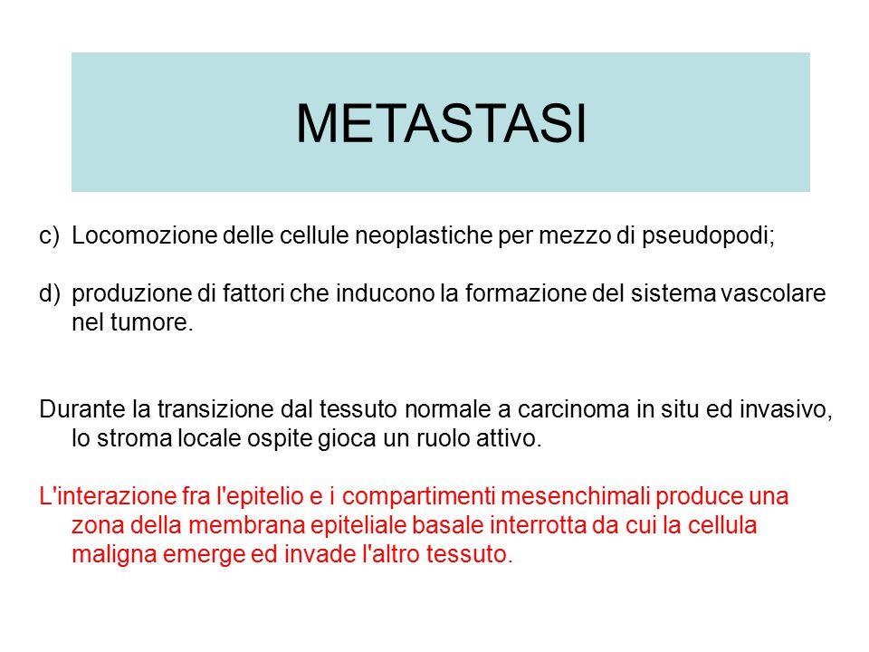 c)Locomozione delle cellule neoplastiche per mezzo di pseudopodi; d)produzione di fattori che inducono la formazione del sistema vascolare nel tumore.