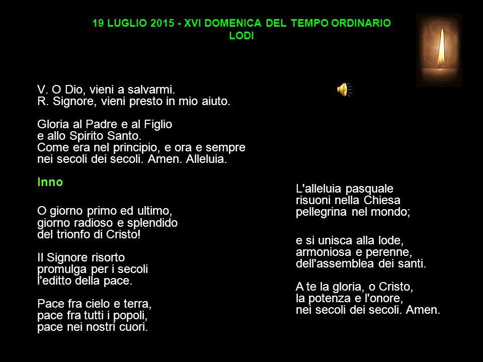19 LUGLIO 2015 - XVI DOMENICA DEL TEMPO ORDINARIO LODI V.