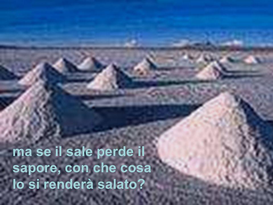 I n quel tempo, Gesù disse ai suoi discepoli: «Voi siete il sale della terra; ma se il sale perde il sapore, con che cosa lo si renderà salato.