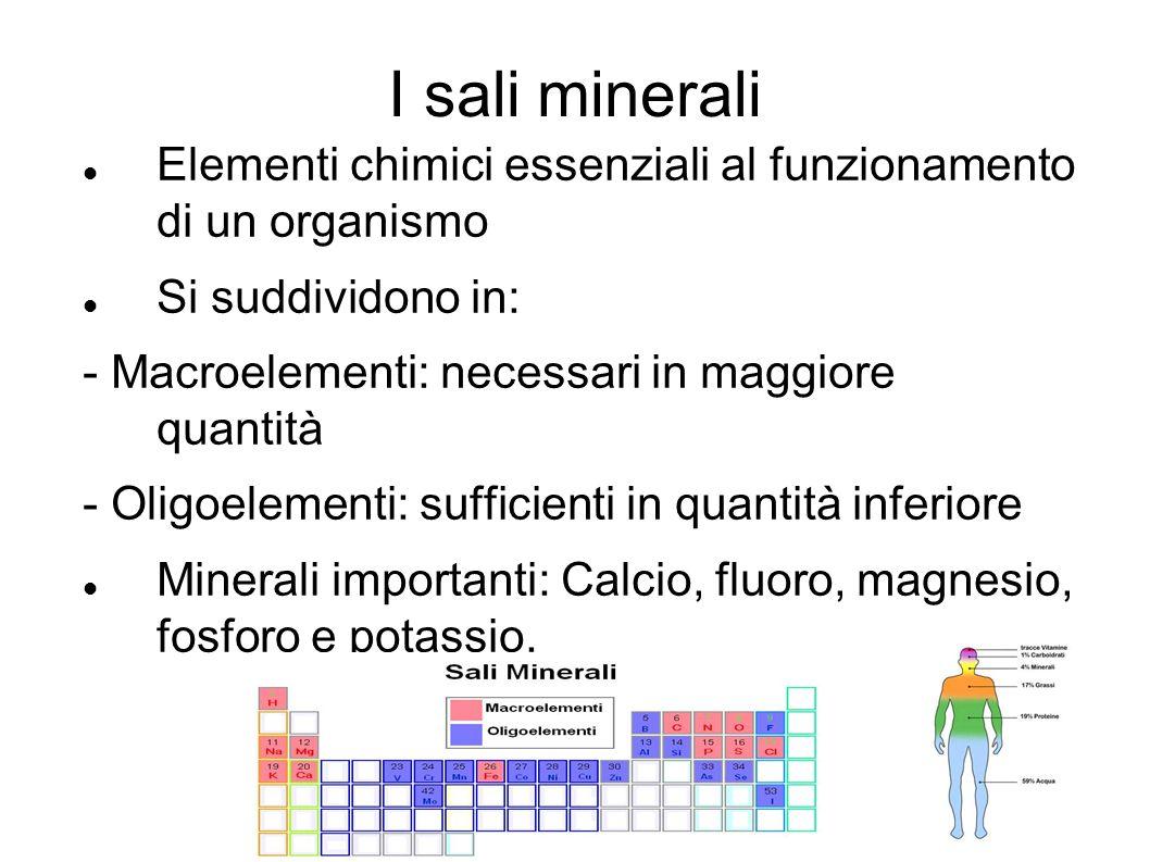 I sali minerali Elementi chimici essenziali al funzionamento di un organismo Si suddividono in: - Macroelementi: necessari in maggiore quantità - Olig