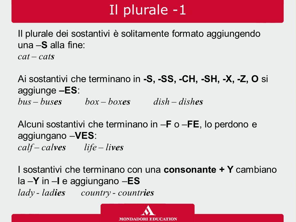Il plurale -1 Il plurale dei sostantivi è solitamente formato aggiungendo una –S alla fine: cat – cats Ai sostantivi che terminano in -S, -SS, -CH, -S