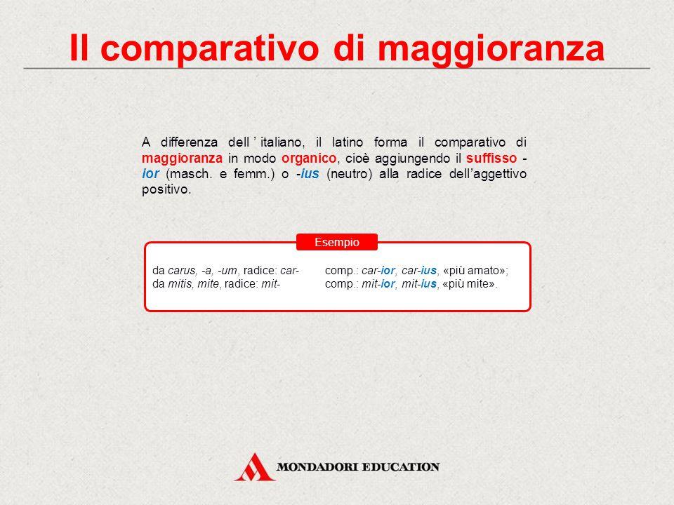 Il comparativo di maggioranza A differenza dell'italiano, il latino forma il comparativo di maggioranza in modo organico, cioè aggiungendo il suffisso - ior (masch.