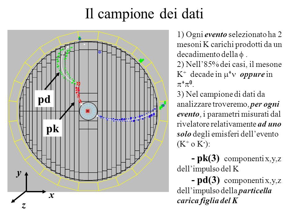 Il campione dei dati 1) Ogni evento selezionato ha 2 mesoni K carichi prodotti da un decadimento della . 2) Nell'85% dei casi, il mesone K + decade i