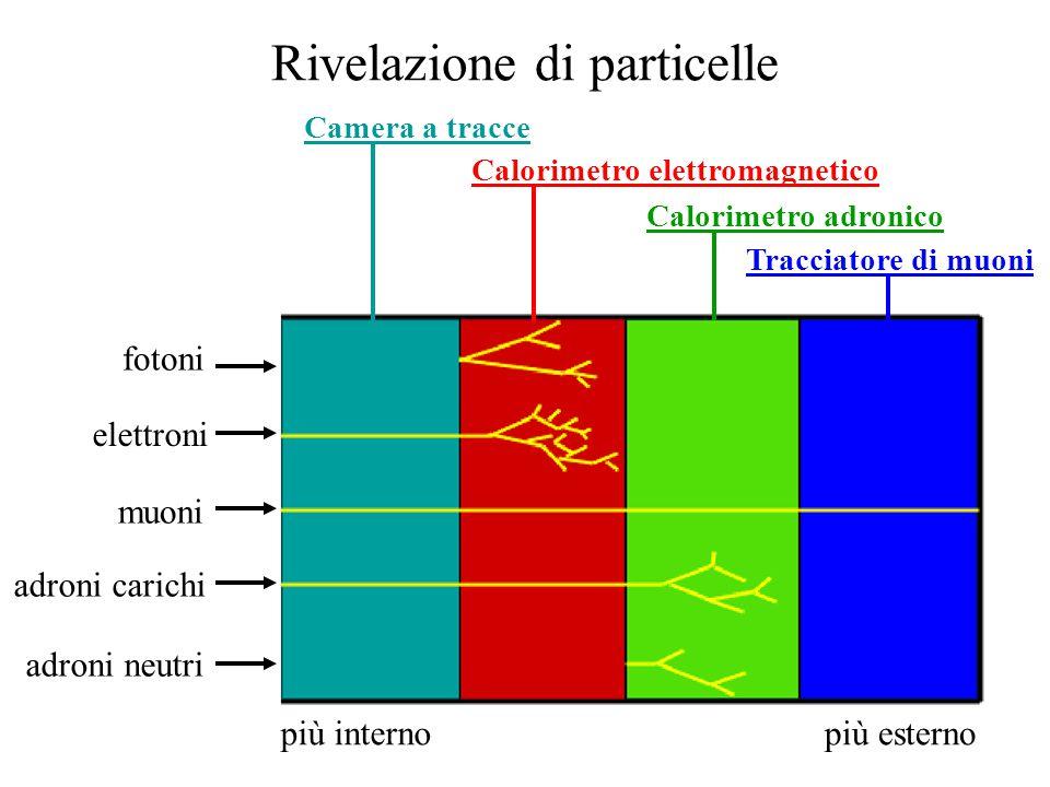 Rivelazione di particelle fotoni elettroni muoni adroni carichi adroni neutri Camera a tracce Calorimetro elettromagnetico Calorimetro adronico Tracciatore di muoni più internopiù esterno