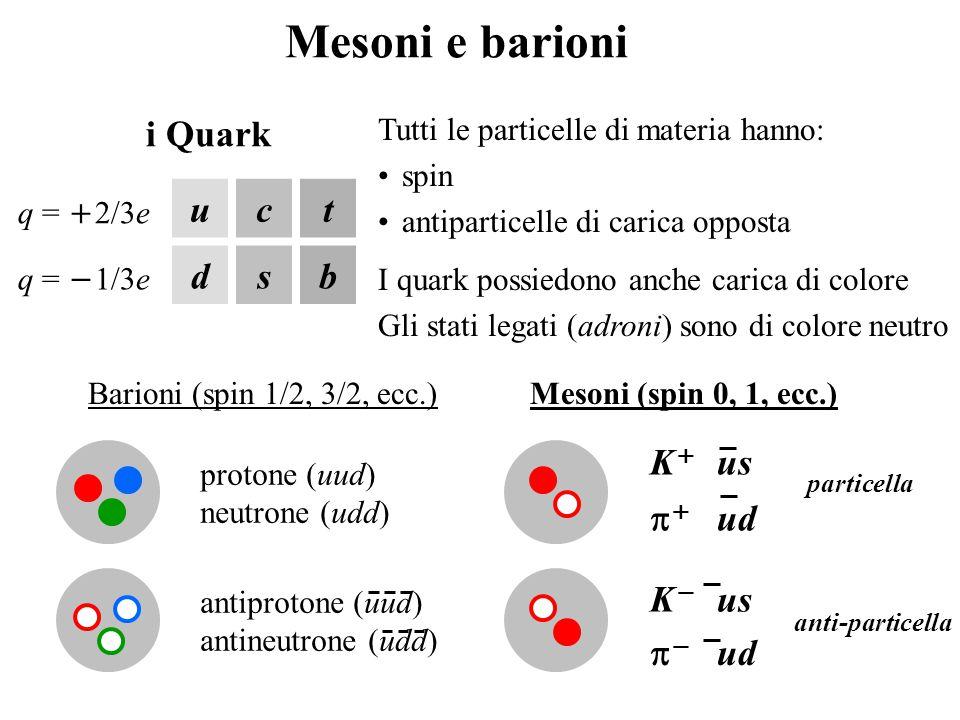 Mesoni e barioni uct dsb q =  2/3e q =  1/3e i Quark Tutti le particelle di materia hanno: spin antiparticelle di carica opposta I quark possiedono