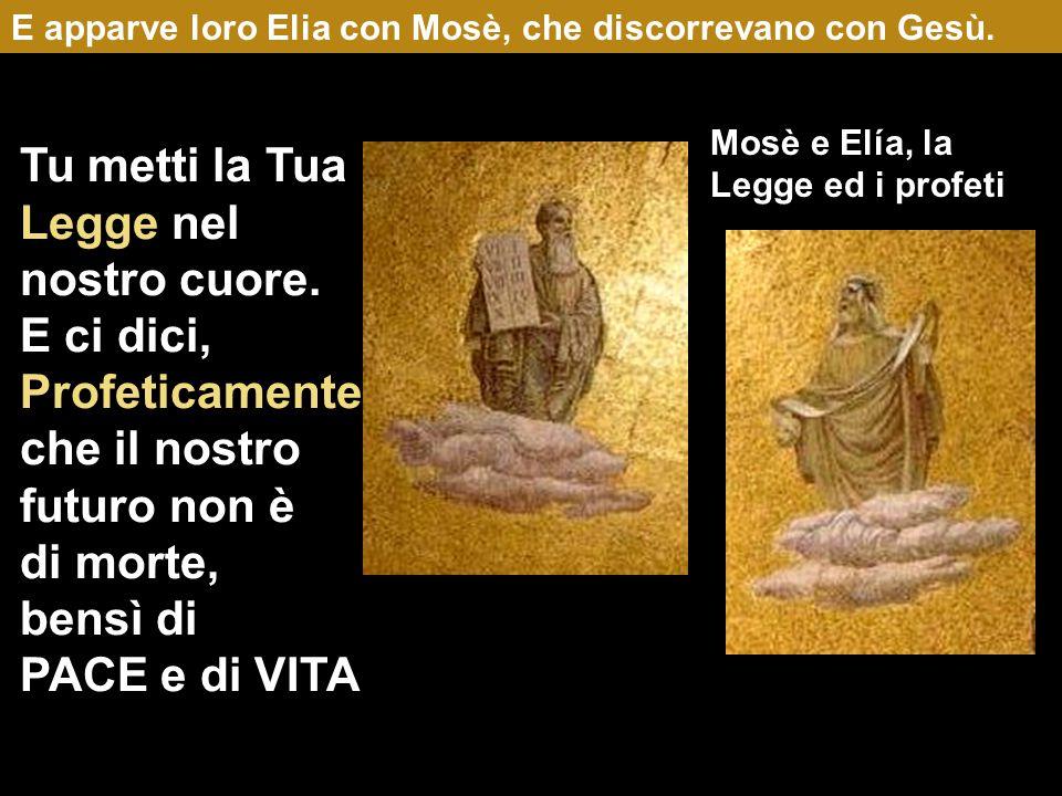 E apparve loro Elia con Mosè, che discorrevano con Gesù.