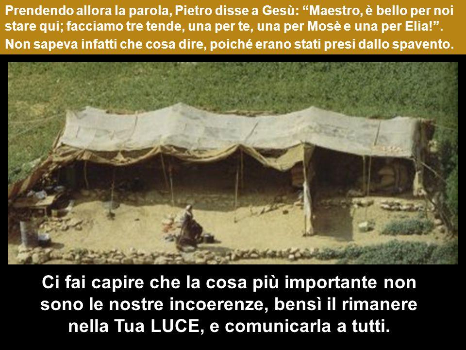 Prendendo allora la parola, Pietro disse a Gesù: Maestro, è bello per noi stare qui; facciamo tre tende, una per te, una per Mosè e una per Elia! .