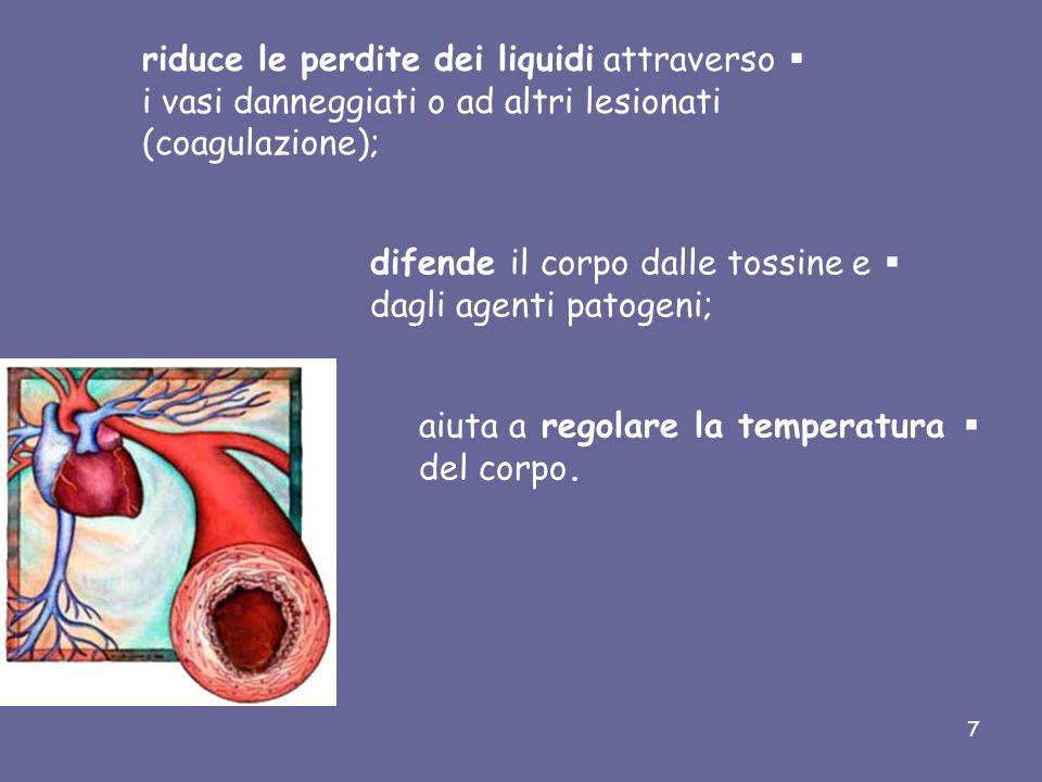Il sangue nell'organismo ha le seguenti funzioni:  trasporta gas disciolti portando ossigeno dai polmoni ai tessuti e anidride carbonica dai tessuti