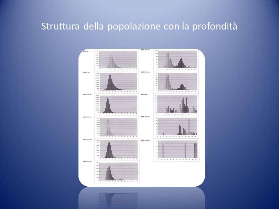 Struttura della popolazione con la profondità