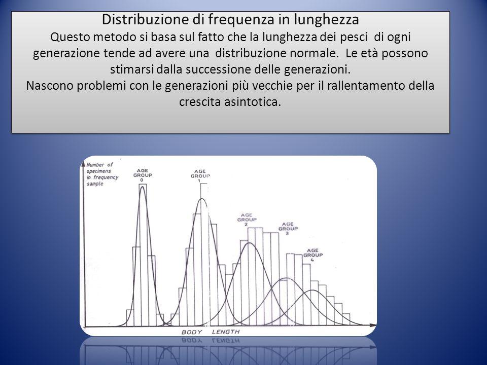 Distribuzione di frequenza in lunghezza Questo metodo si basa sul fatto che la lunghezza dei pesci di ogni generazione tende ad avere una distribuzion