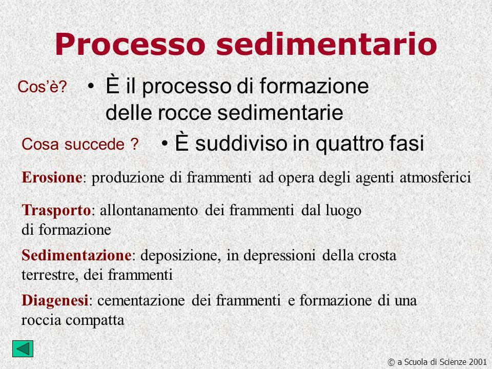Processo sedimentario È il processo di formazione delle rocce sedimentarie È suddiviso in quattro fasi Erosione: produzione di frammenti ad opera degl