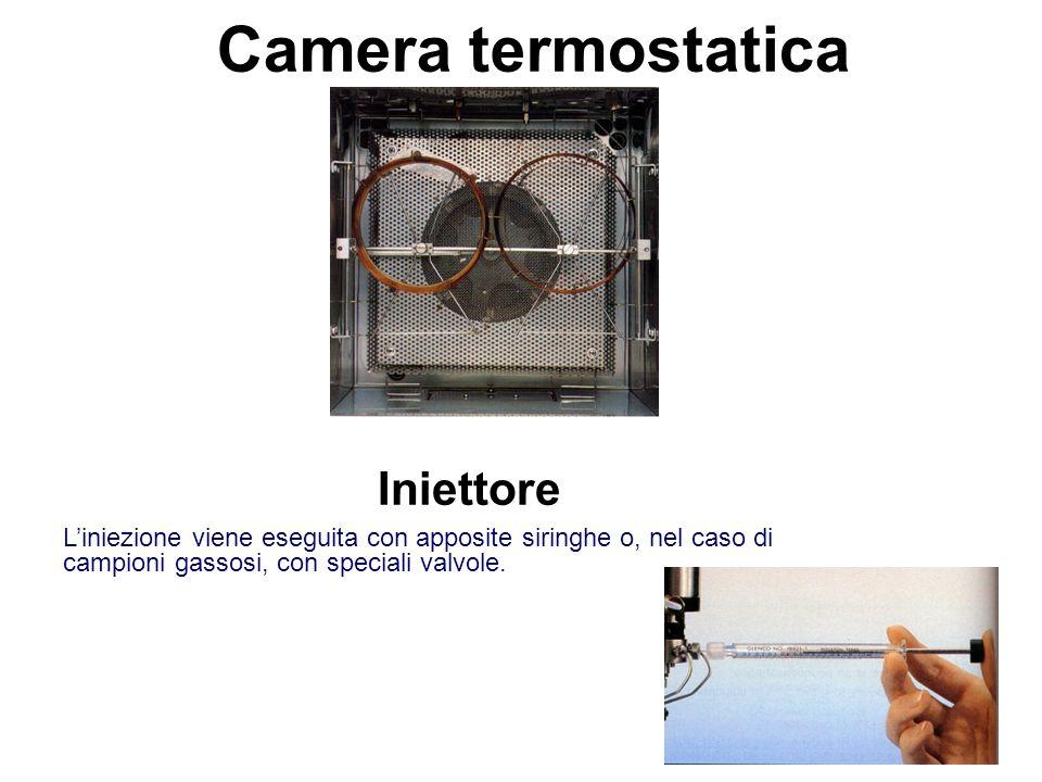 Camera termostatica Iniettore L'iniezione viene eseguita con apposite siringhe o, nel caso di campioni gassosi, con speciali valvole.
