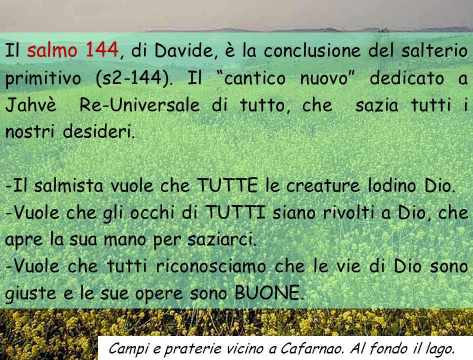 Il salmo 144, di Davide, è la conclusione del salterio primitivo (s2-144).