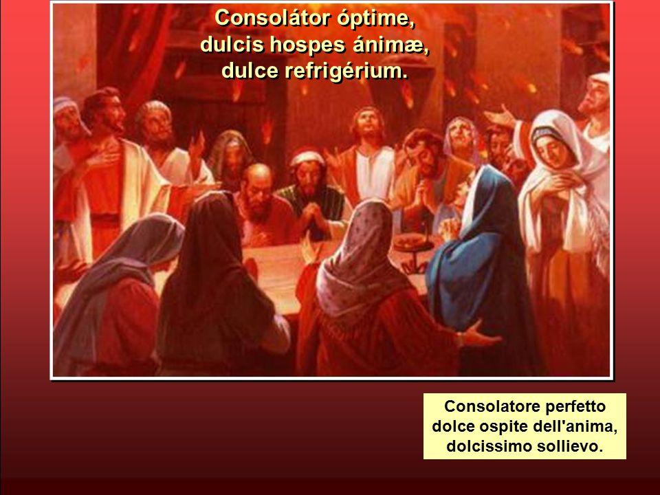 Veni, pater páuperum, veni, dator múnerum, veni, lumen córdium.