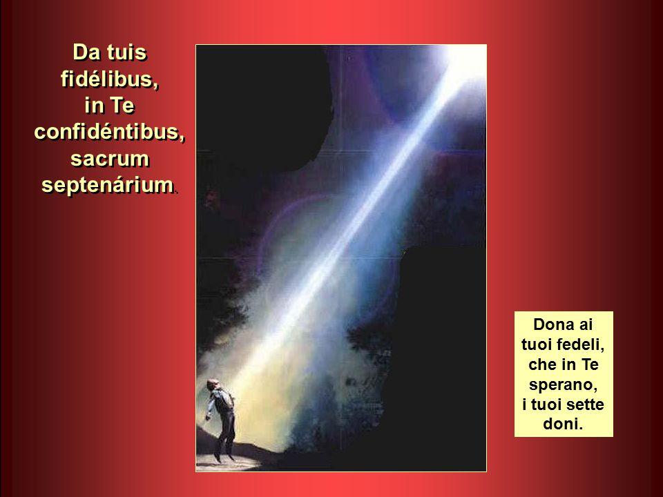 Flecte quod est rígidum, fove quod est frígidum, rege quod est dévium.