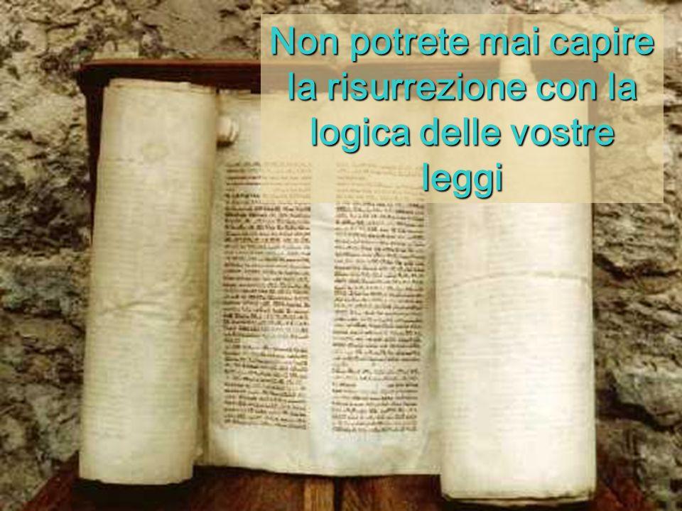 Non potrete mai capire la risurrezione con la logica delle vostre leggi