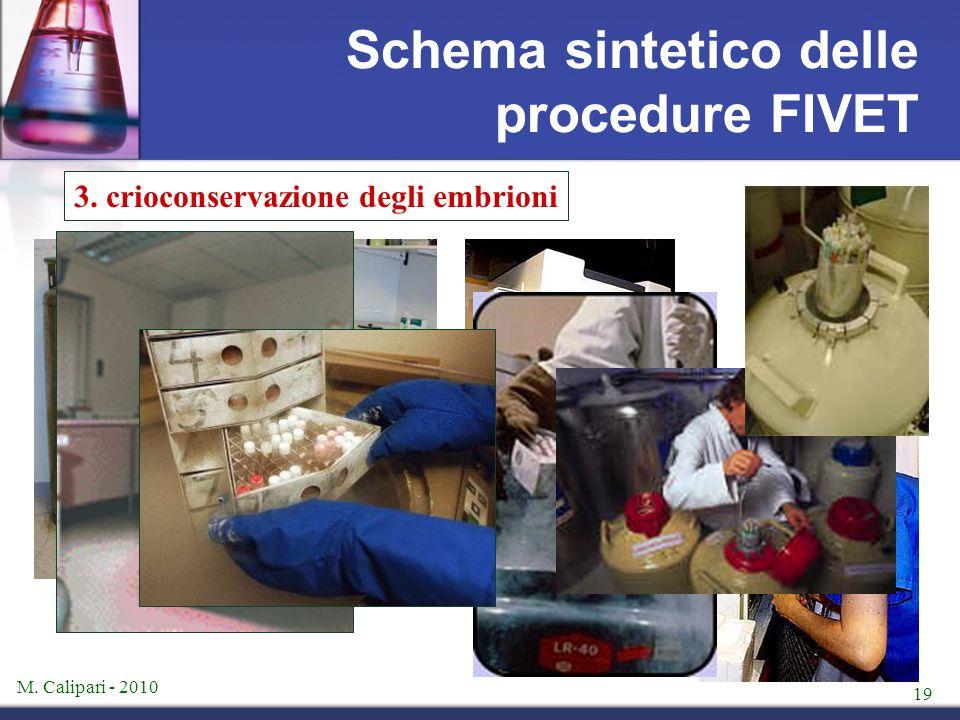 M. Calipari - 2010 19 Schema sintetico delle procedure FIVET 3. crioconservazione degli embrioni