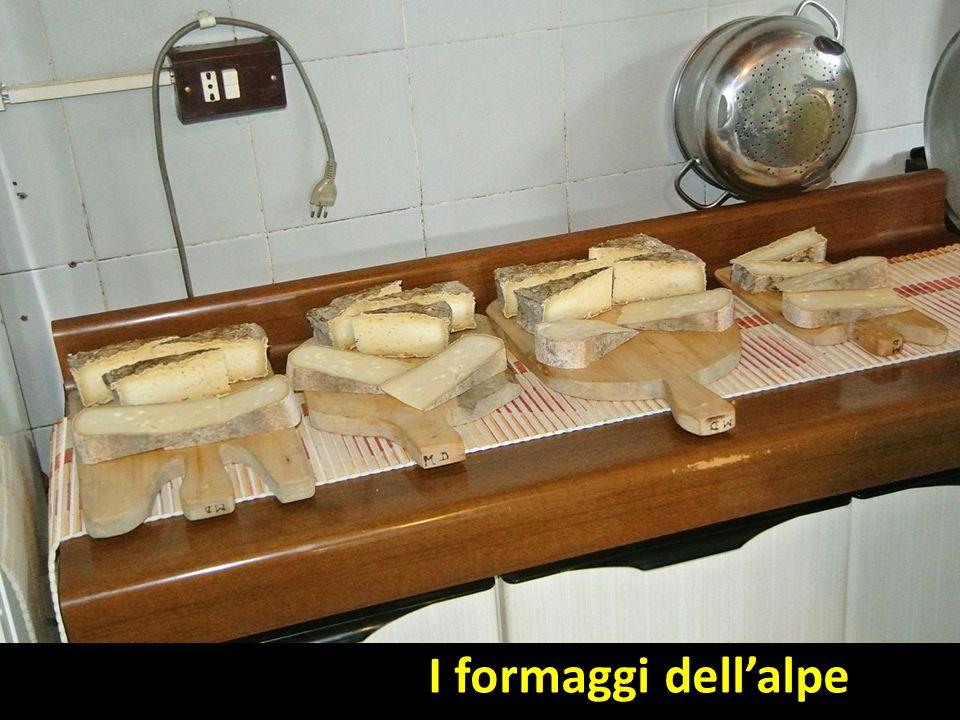 I formaggi dell'alpe