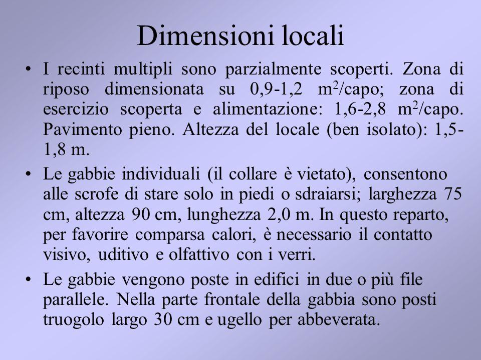 Dimensioni locali I recinti multipli sono parzialmente scoperti.