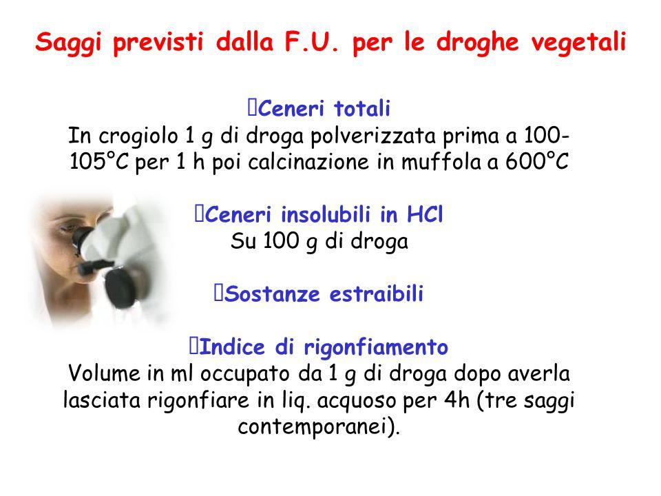 Saggi previsti dalla F.U. per le droghe vegetali  Ceneri totali In crogiolo 1 g di droga polverizzata prima a 100- 105°C per 1 h poi calcinazione in