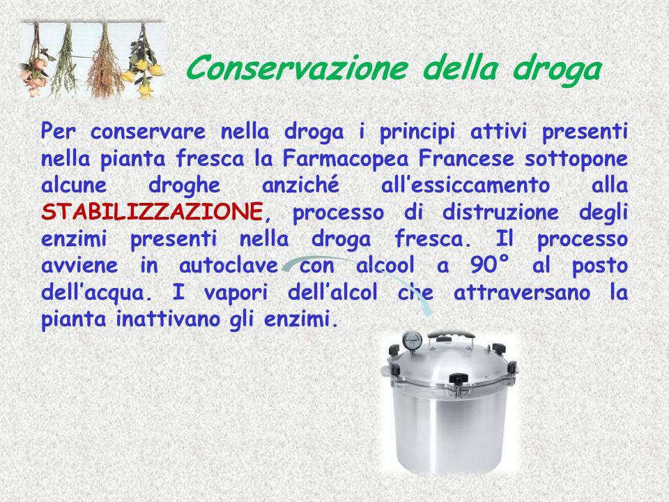 Per conservare nella droga i principi attivi presenti nella pianta fresca la Farmacopea Francese sottopone alcune droghe anziché all'essiccamento alla
