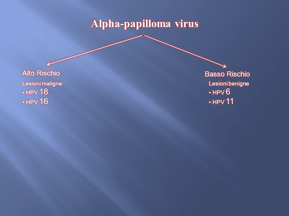 The Open Virology Journal (2012)