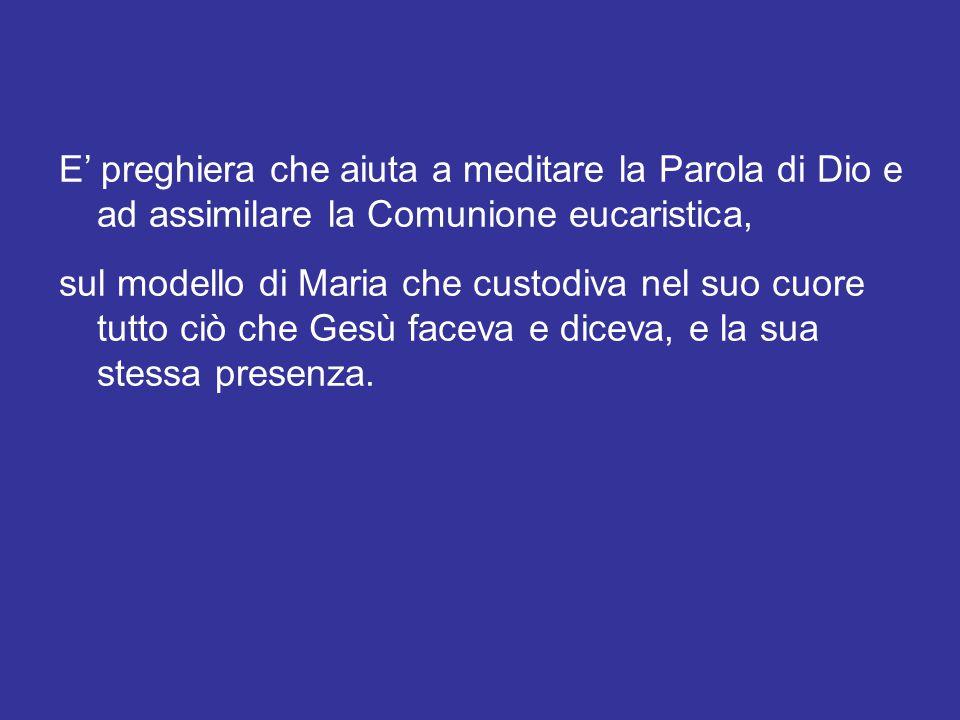 Sulle orme del Venerabile Giovanni Paolo II (cfr Lett.