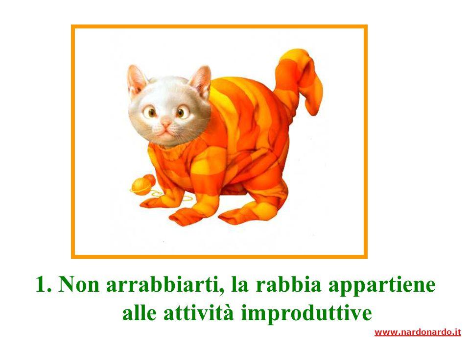 10 Consigli www.nardonardo.it