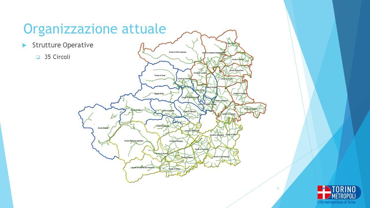 Organizzazione attuale  Strutture Operative  35 Circoli 7