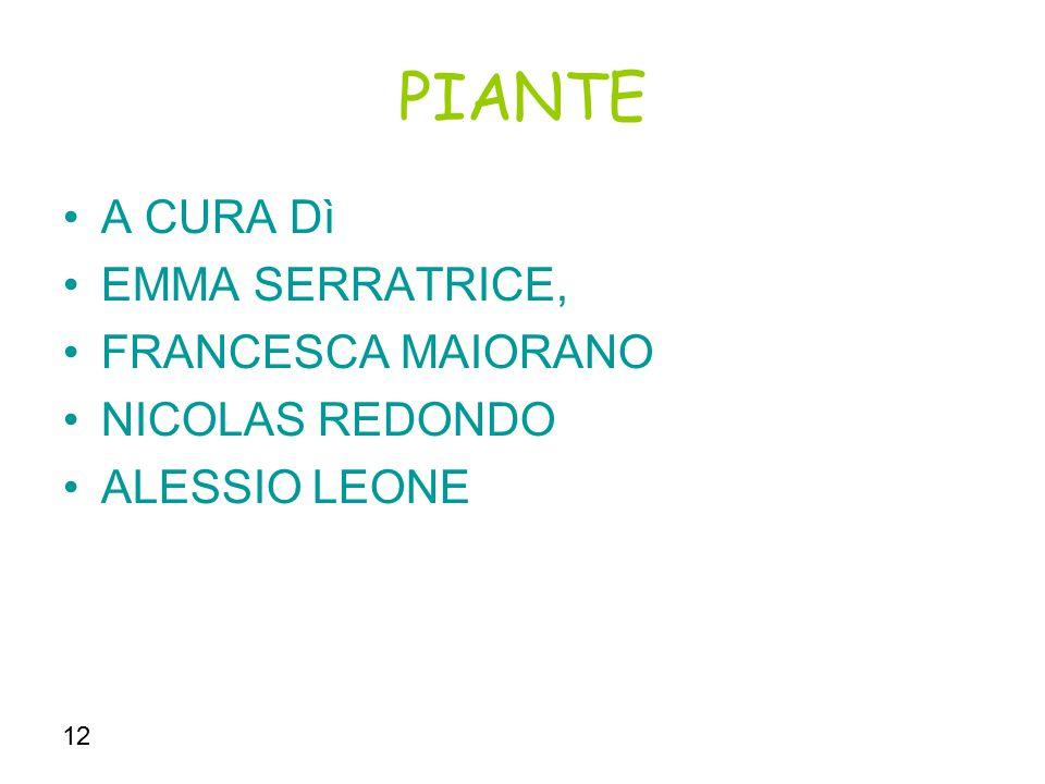 12 le piante