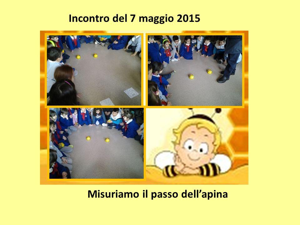 Incontro del 7 maggio 2015 Misuriamo il passo dell'apina