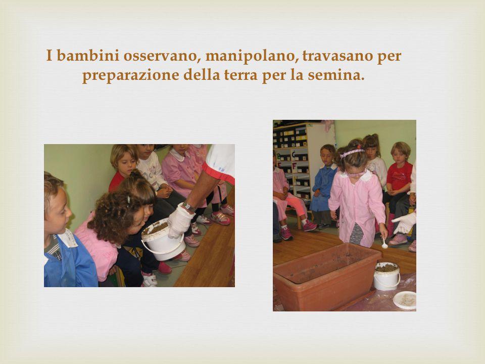 I bambini osservano, manipolano, travasano per preparazione della terra per la semina.