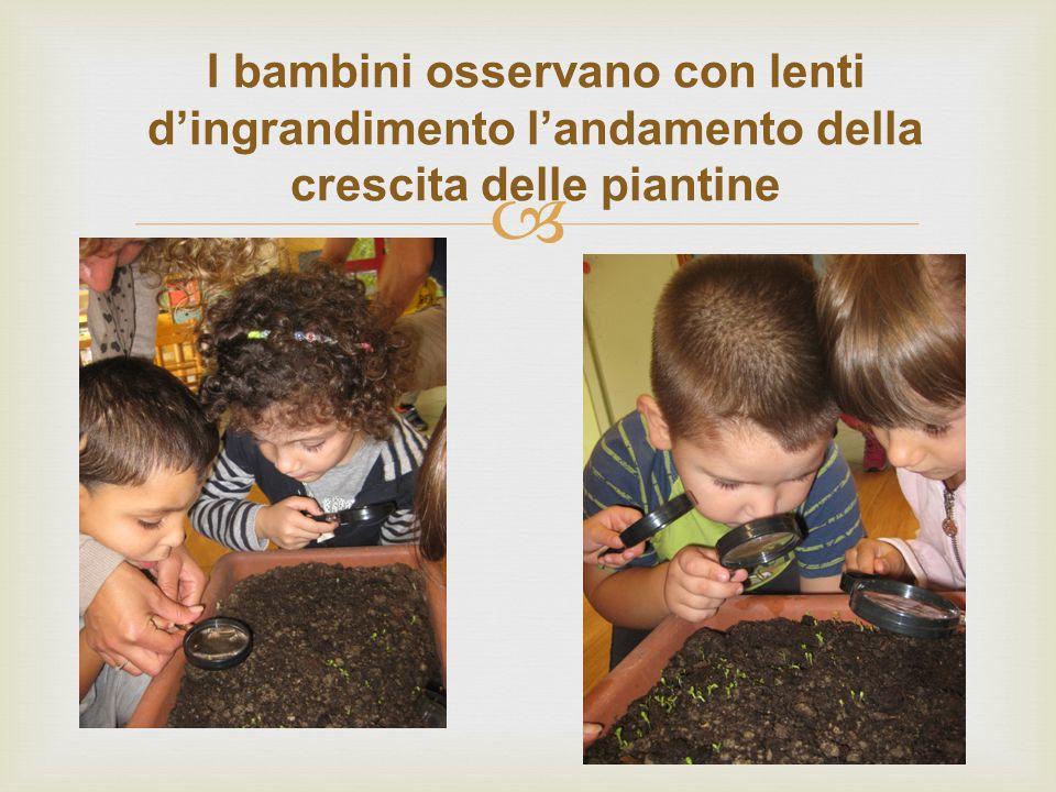  I bambini osservano con lenti d'ingrandimento l'andamento della crescita delle piantine
