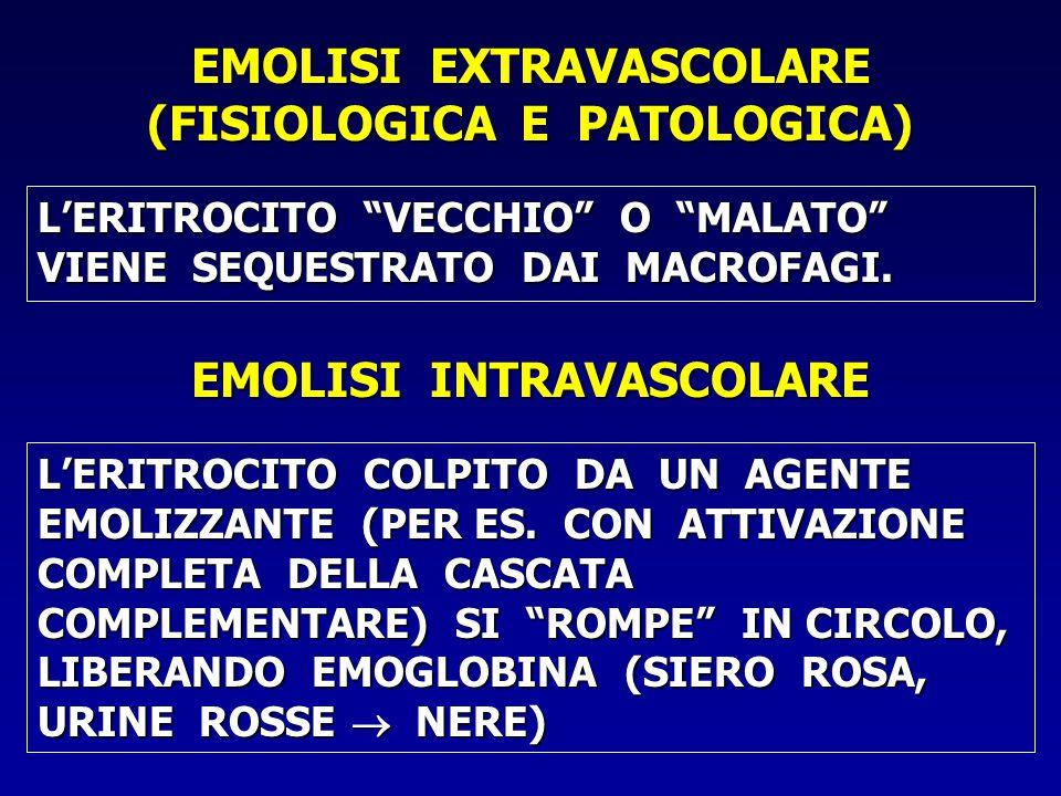 EMOLISI EXTRAVASCOLARE (FISIOLOGICA E PATOLOGICA) L'ERITROCITO VECCHIO O MALATO VIENE SEQUESTRATO DAI MACROFAGI.
