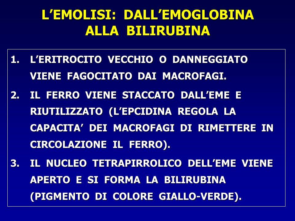 L'EMOLISI: DALL'EMOGLOBINA ALLA BILIRUBINA 1.L'ERITROCITO VECCHIO O DANNEGGIATO VIENE FAGOCITATO DAI MACROFAGI.