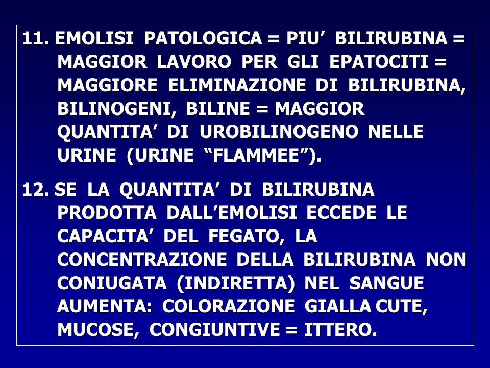 11. EMOLISI PATOLOGICA = PIU' BILIRUBINA = MAGGIOR LAVORO PER GLI EPATOCITI = MAGGIORE ELIMINAZIONE DI BILIRUBINA, BILINOGENI, BILINE = MAGGIOR QUANTI