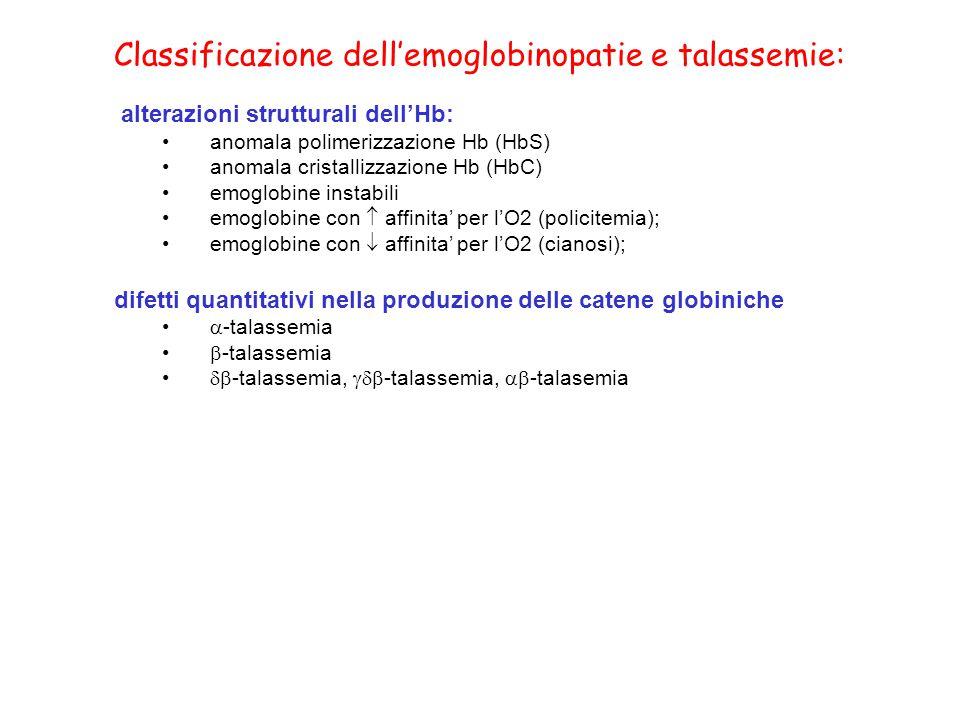 emoglobina = tetramero di 4 catene globiniche + 4 gruppi eme Ferro ++ + protoporfirina IX eme