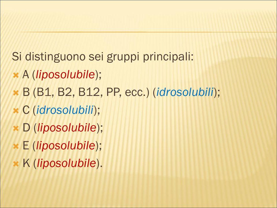 Si distinguono sei gruppi principali:  A (liposolubile);  B (B1, B2, B12, PP, ecc.) (idrosolubili);  C (idrosolubili);  D (liposolubile);  E (liposolubile);  K (liposolubile).