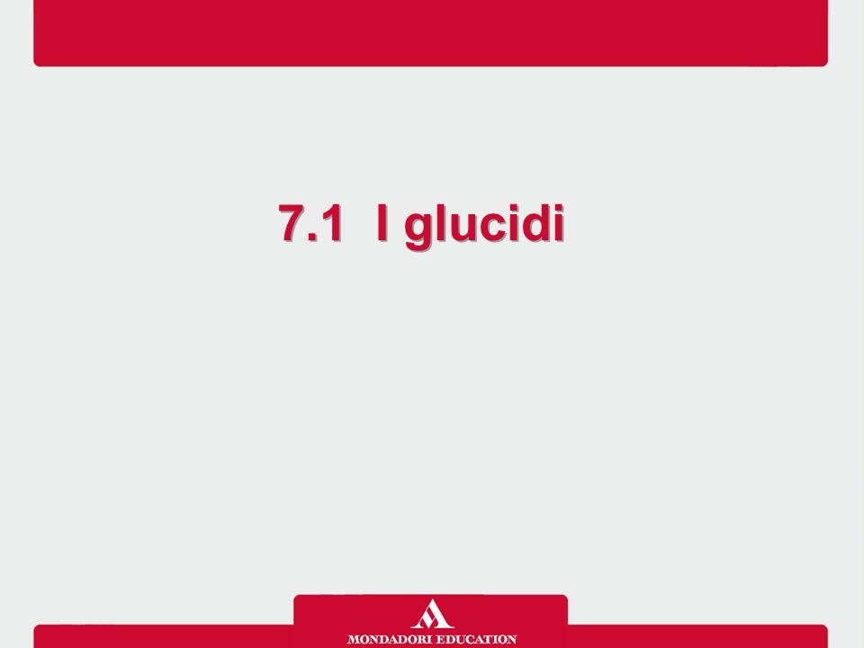 7.1 I glucidi