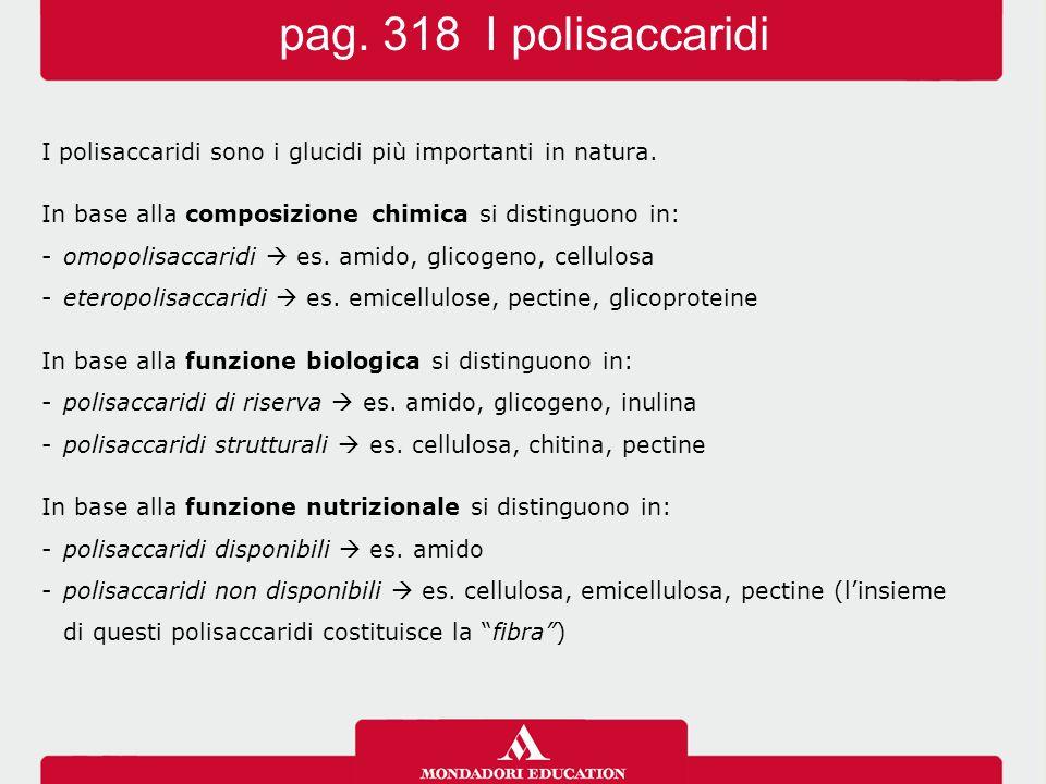 pag. 318 I polisaccaridi I polisaccaridi sono i glucidi più importanti in natura. In base alla composizione chimica si distinguono in: -omopolisaccari
