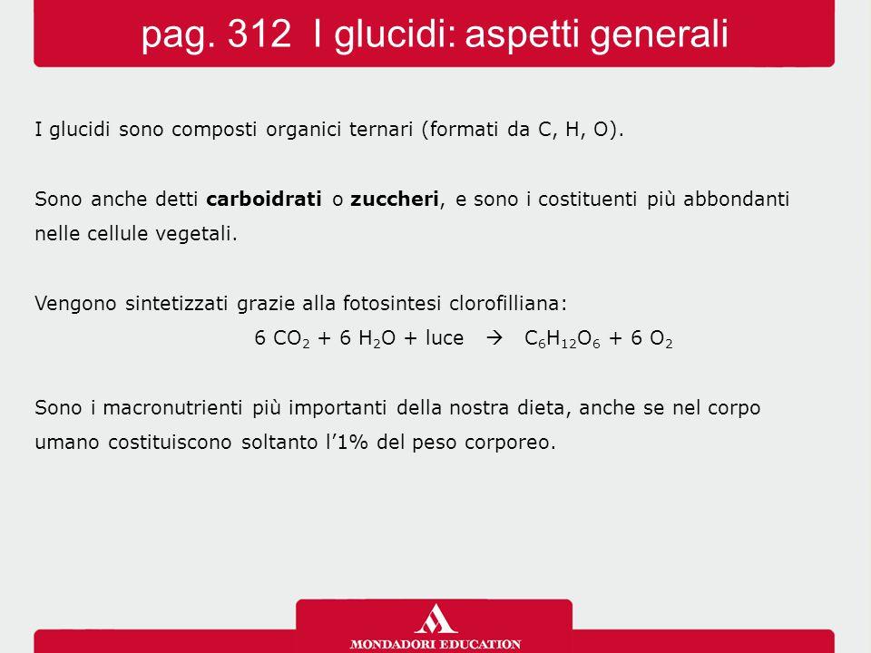 I glucidi sono composti organici ternari (formati da C, H, O). Sono anche detti carboidrati o zuccheri, e sono i costituenti più abbondanti nelle cell