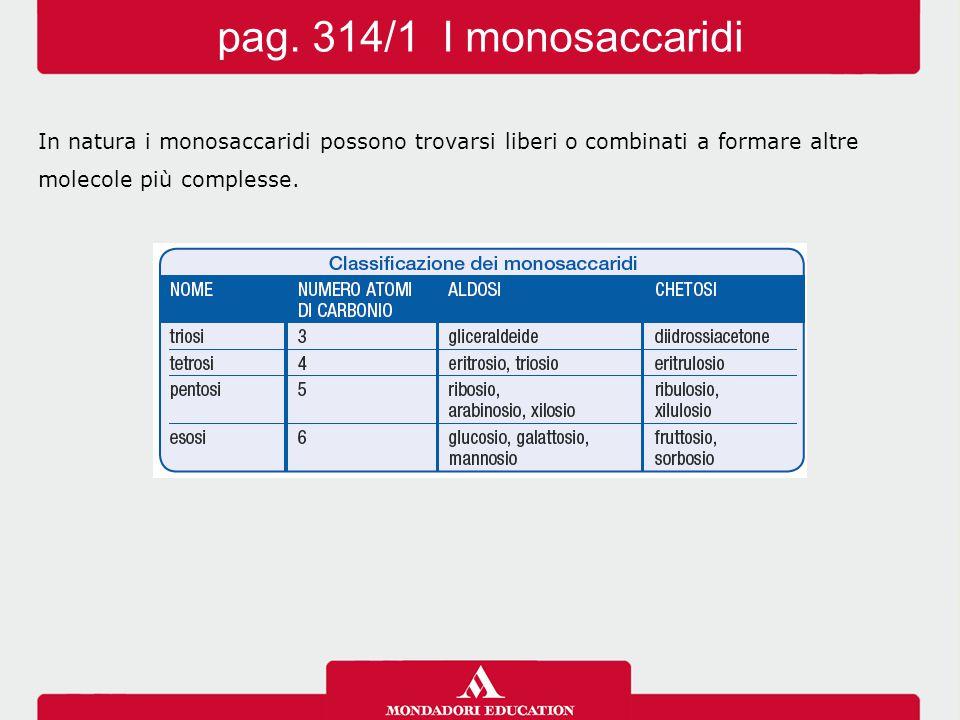 In natura i monosaccaridi possono trovarsi liberi o combinati a formare altre molecole più complesse. pag. 314/1 I monosaccaridi